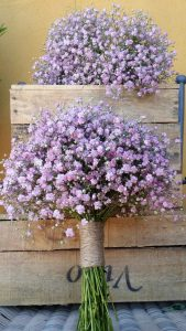 ramo de flores paniculata